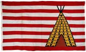 alcatraz-flag.jpg