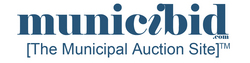 Online Government Auction Platform Now Provides Nationwide Service to Government Agencies and Municipalities
