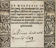€ 114 000* for a letter Magellan's circumnavigation of the globe achieves top price at Ketterer Kunst in Hamburg