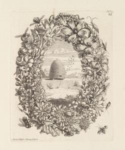 Ketterer Kunst to auction Maria Sibylla Merian's magnificent book on insects