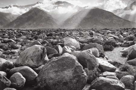 Ansel Adams, William Wegman, Herb Ritts and Cartier-Bresson Photographs for New York Auction