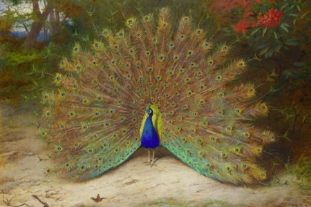 Archibald Thorburn Paintings Collection Auctioned at Bonhams