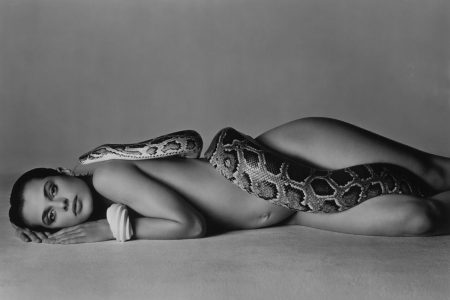 Richard Avedon's Nastassia Kinski And The Serpent for Heritage Auctions New York Photography Event