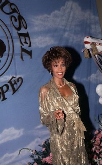 Fifteen gowns and dresses, owned and worn by the late singer Whitney Houston, will  be sold at public auction Saturday, November 21st.